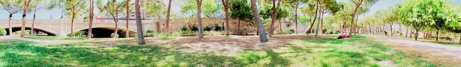 Jardin del Turia Valencia